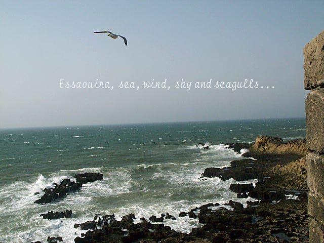 Essaouira Wind